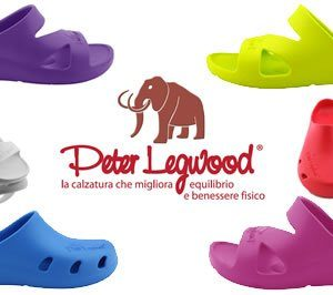 Peter Legwood aequos, dolphin - shark - bubble